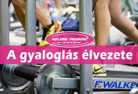 duna fitness mohács walking program